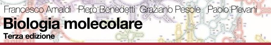 Francesco Amaldi, Piero Benedetti, Graziano Pesole, Paolo Plevani, Biologia molecolare