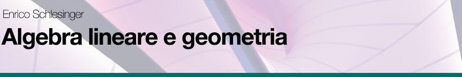 Enrico Schlesinger, Algebra lineare e geometria